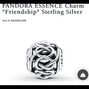 Authentic Pandora ESSENCE friendship charm